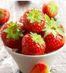 草莓的个头一年比一年大 你还敢吃吗
