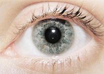 高度近视易引发视网膜脱落 早作预防远离它
