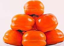空腹吃柿子 当心小肠梗阻找上你