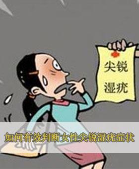 武汉黄浦医院张建华主任:如何有效判断女性尖锐湿疣症状